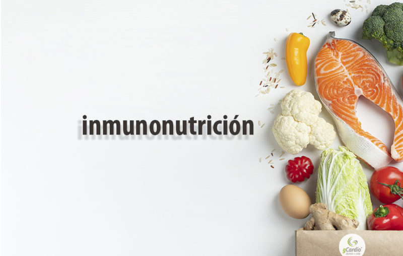 la-inmunonutricion-frente-al-covid-19-nutricion-virus